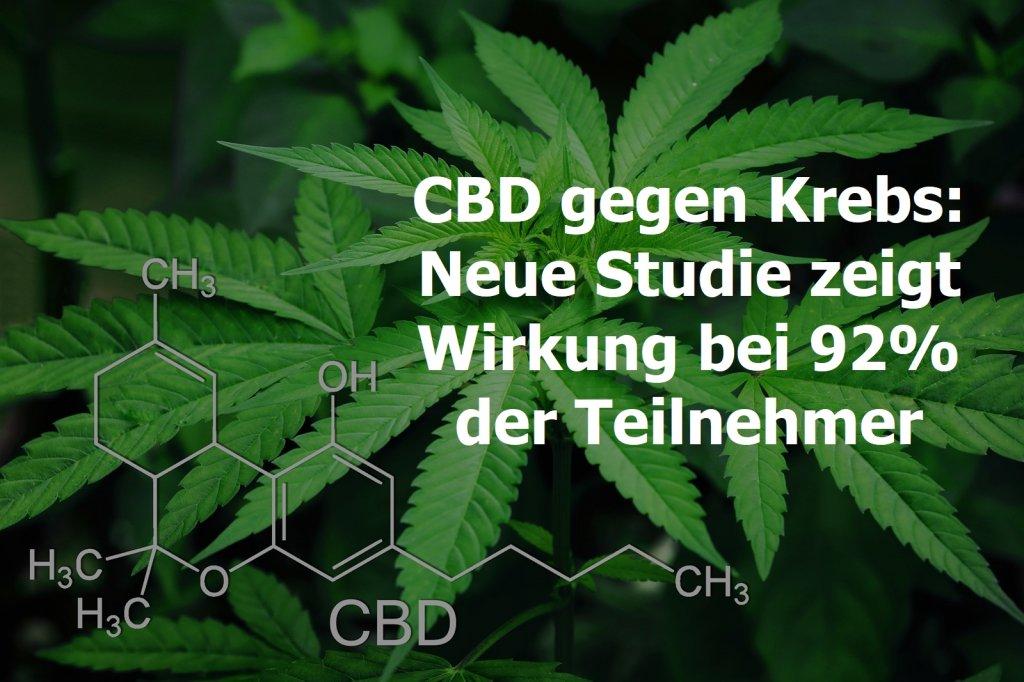 cbd, cannabis, marihuana, krebs, studie