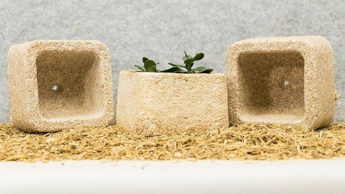 Ikea ersetzt Styropor durch nachwachsende Pilz-Verpackungen