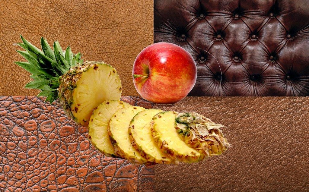 Leder aus Ananasblättern und Apfelresten – 100% abbaubar