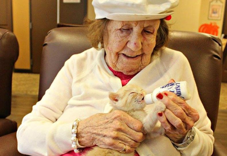 Bewohner eines Altenheims pflegen verwaiste Kätzchen