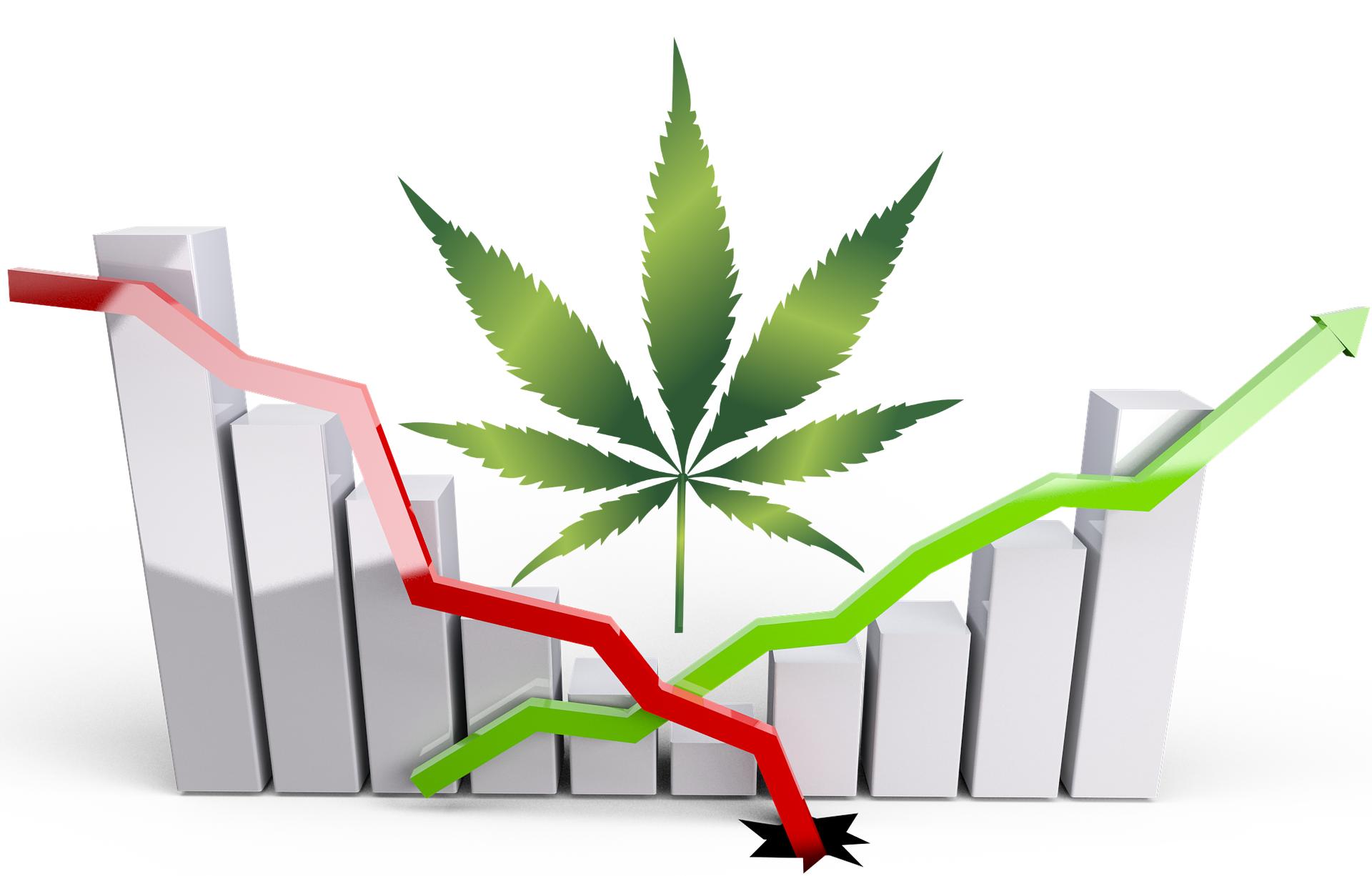 Studie beweist: Cannabis Legalisierung hilft gegen Corona-Wirtschaftskrise